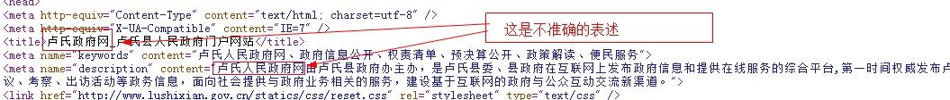 卢氏县人民政府网在优化前存在的问题
