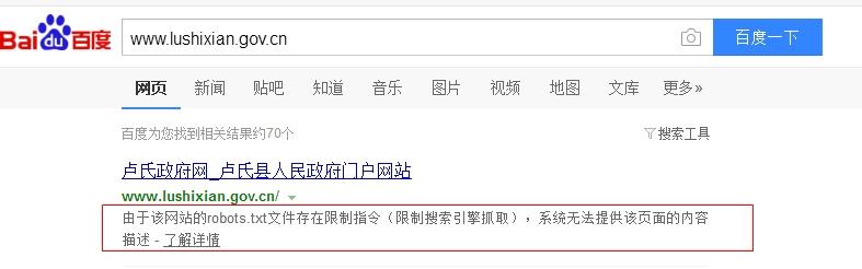卢氏县人民政府网在优化前robots文件设置错误